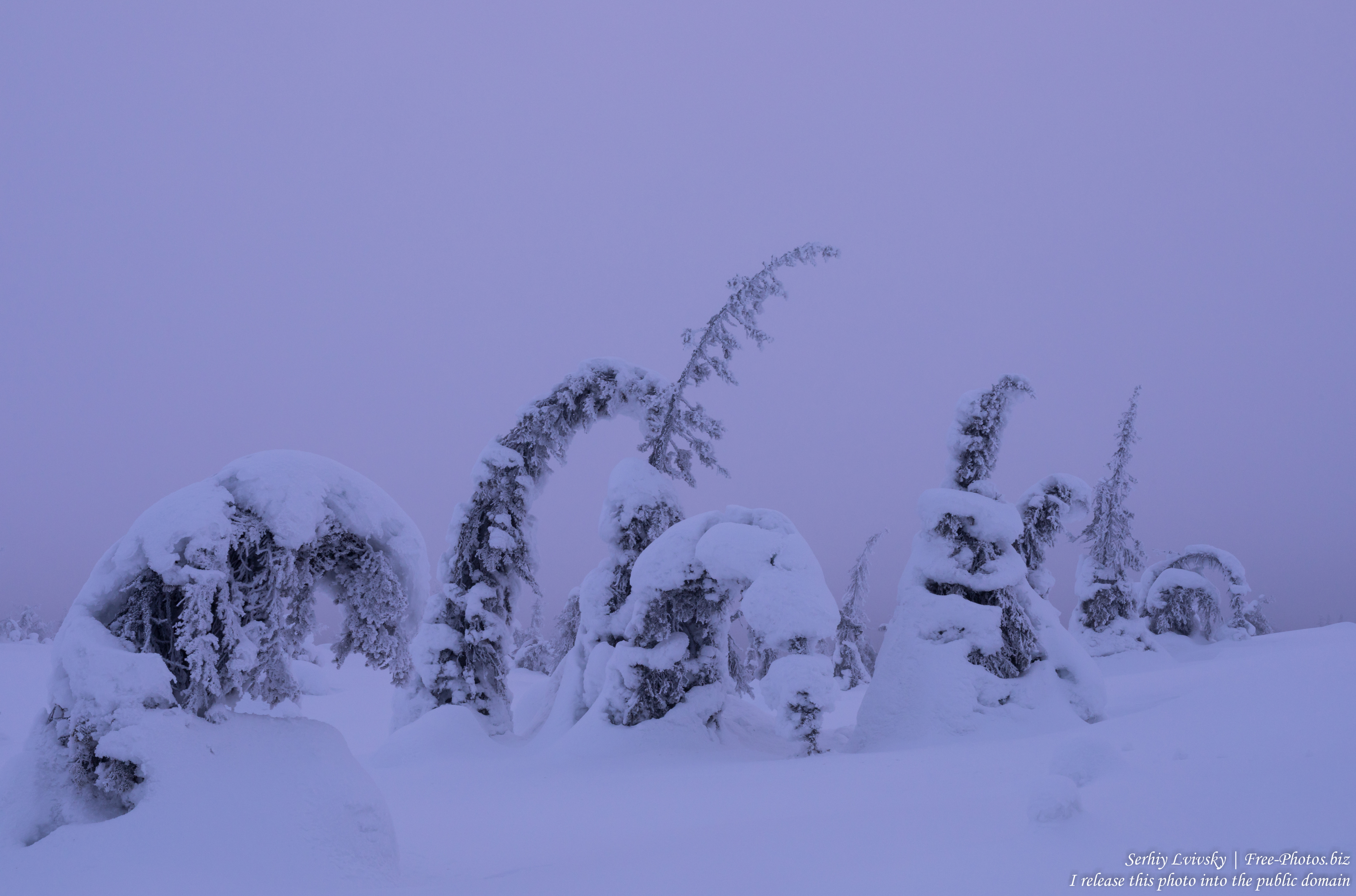 riisitunturi_finland_photographed_in_january_2020_by_serhiy_lvivsky_01