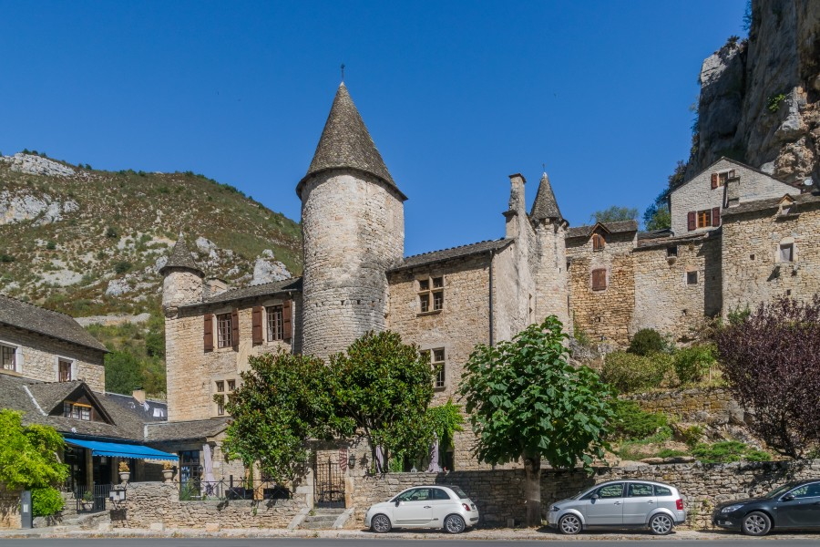 Castle of La Malene 02
