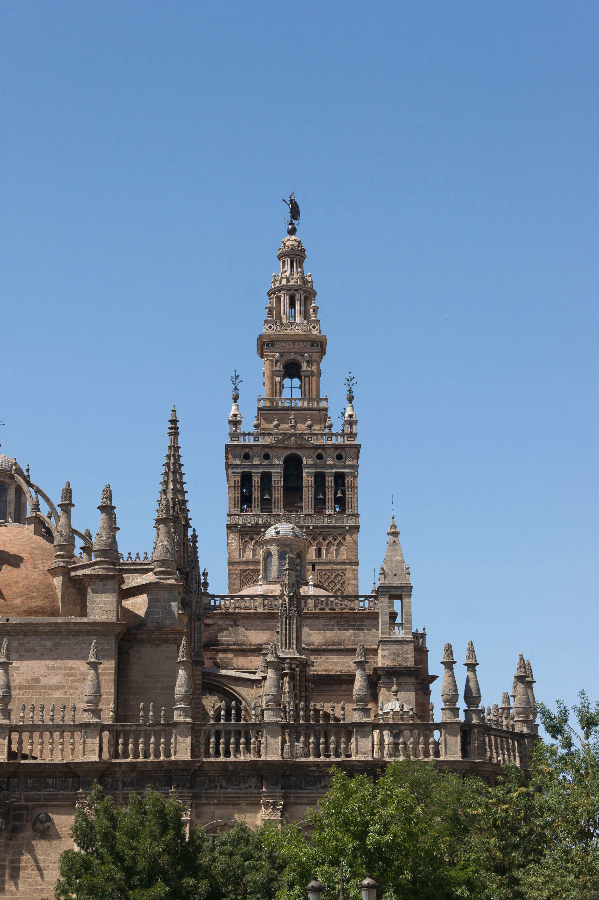 Giralda cathedral from Alcazar Seville Spain