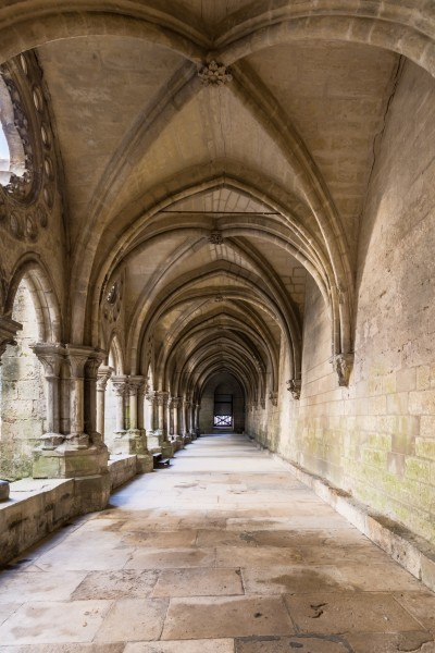 Laon Cathedral Cloister 02