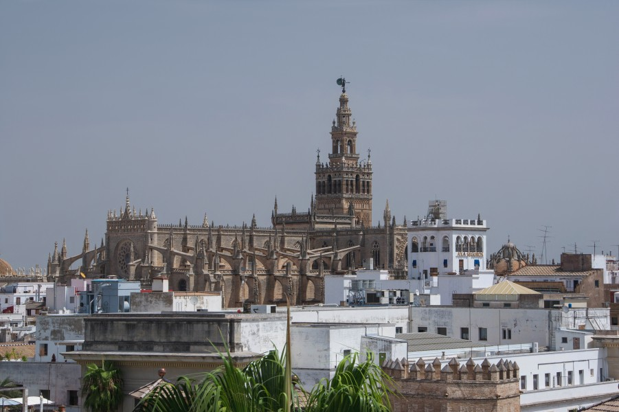 The cathedral and some roofs over Seville Spain