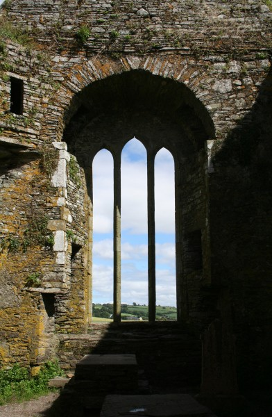 Timoleague Friary Window