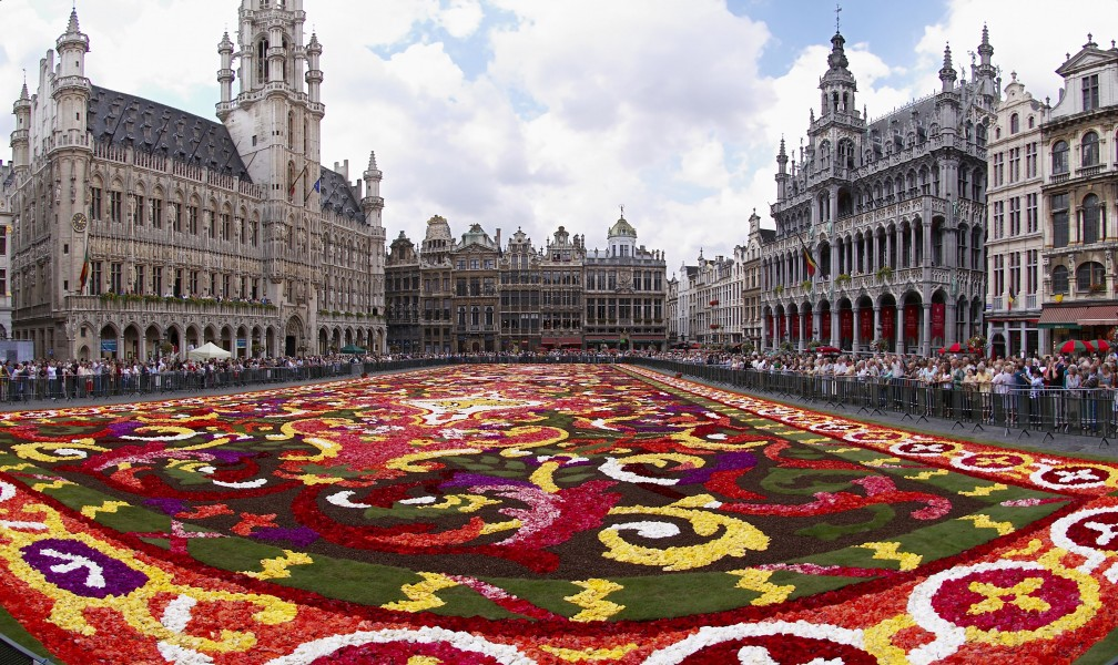Brussels floral carpet B