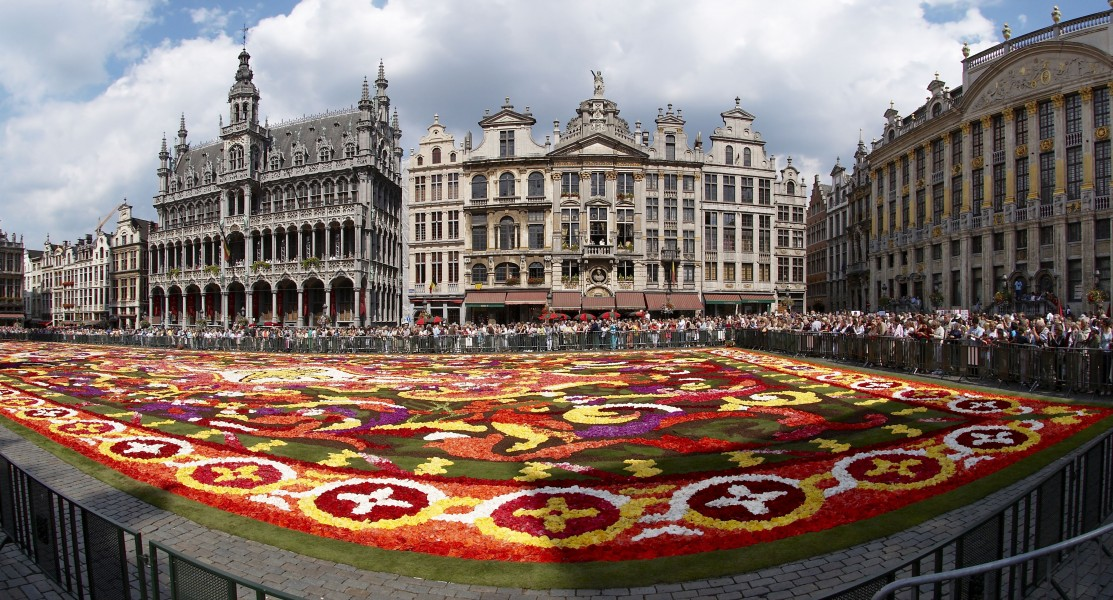 Brussels floral carpet C