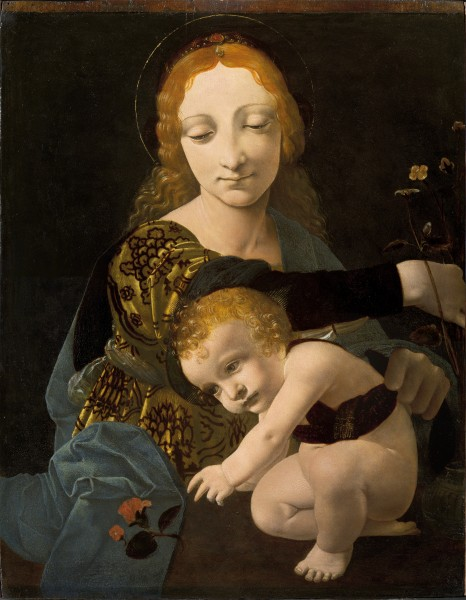 Giovanni Antonio Boltraffio - The Virgin and Child (The Madonna of the Rose) - Google Art Project