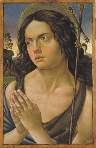 Raffaellino del Garbo - Saint John the Baptist - Google Art Project