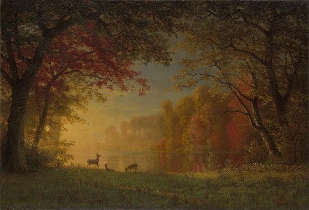 Indian Sunset Deer by a Lake by Albert Bierstadt