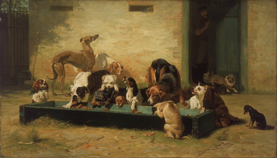 John Charles Dollman - Table d'Hote at a Dogs' Home - Google Art Project