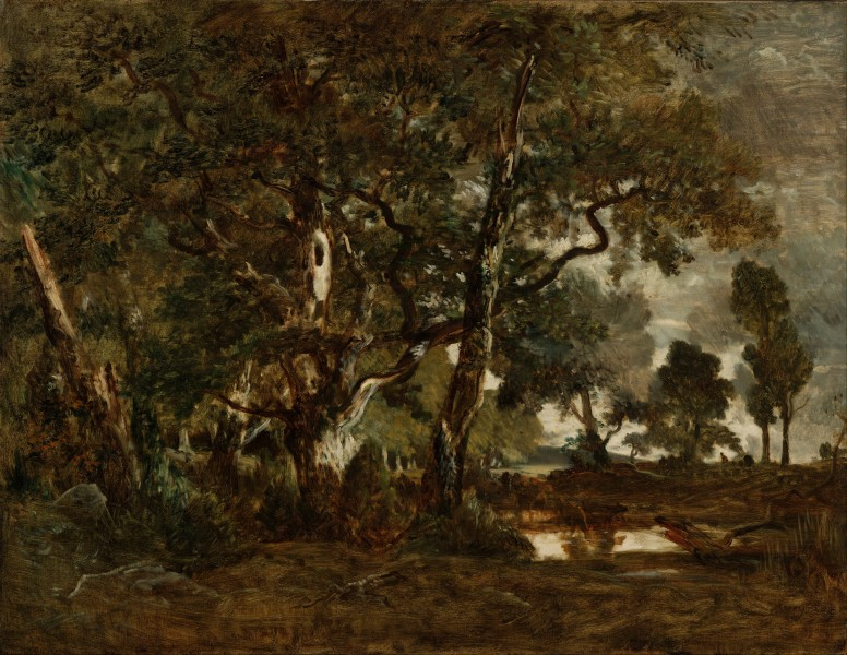 Théodore Rousseau (French - Forest of Fontainebleau, Cluster of Tall Trees Overlooking the Plain of Clair-Bois at the Edge of Ba... - Google Art Project