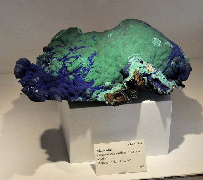 Harvard Museum of Natural History. Malachite. Bisbee, Cochise Co., AZ (DerHexer) 2012-07-20