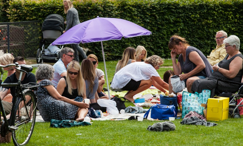people in a park in Copenhagen, Denmark, June 2014, picture 35