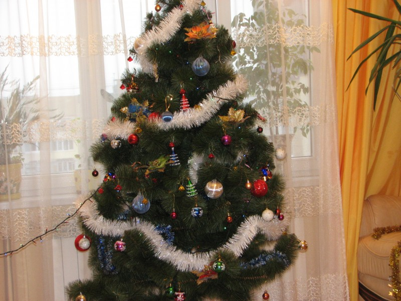 Christmas tree in a Lviv apartment