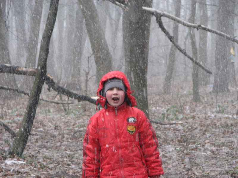 A boy in a forest during a snowfall