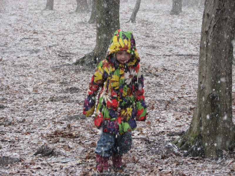 a child girl in a forest during a snowfall