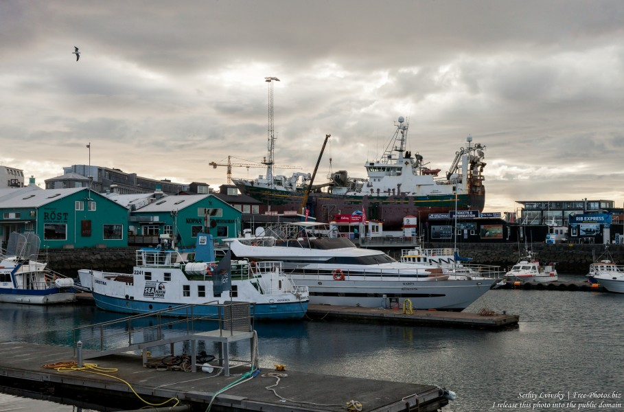 Reykjavik, Iceland, photographed in May 2019 by Serhiy Lvivsky, picture 66
