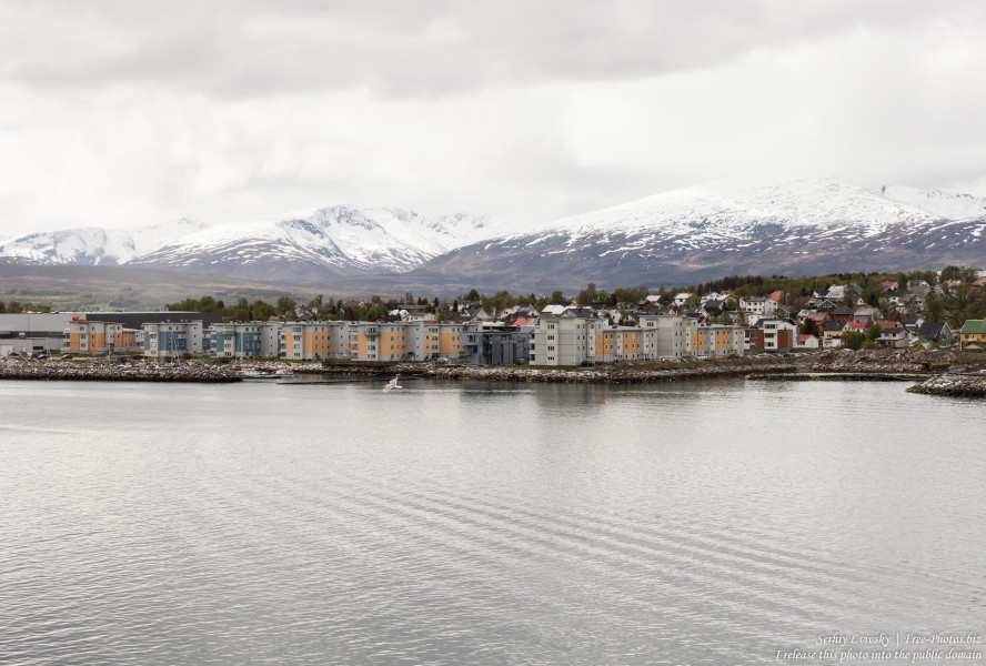 Tromso, Norway, photographed in June 2018 by Serhiy Lvivsky, picture 23