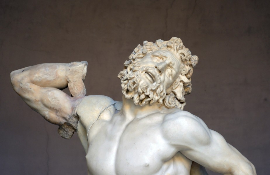Face of Laocoon in Vatican