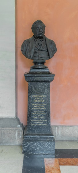 Ferdinand von Hebra (1816-1880), Nr. 106, bust (bronze) in the Arkadenhof of the University of Vienna-2537-HDR-2