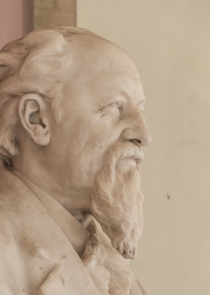 Hermann von Widerhofer (1832-1901), physician, Nr. 131, bust (marble) in the Arkadenhof of the University of Vienna-3611