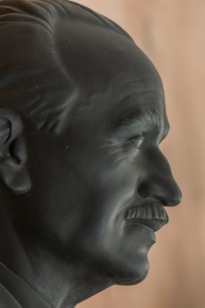 Johann Radon (1887-1956), Nr. 107, bust (bronze) in the Arkadenhof of the University of Vienna-2890