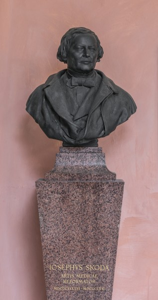 Josef von Skoda (1805-1881), Nr. 102 bust (bronze) in the Arkadenhof of the University of Vienna--34