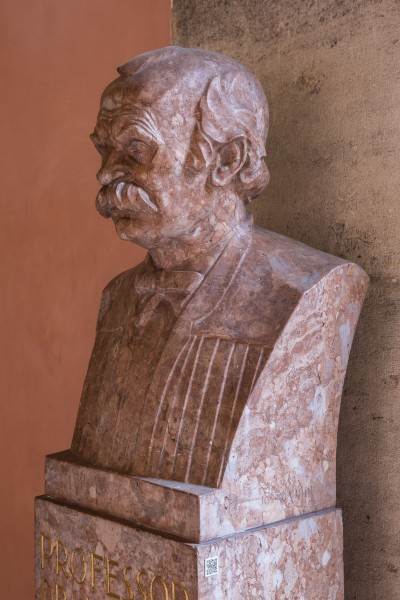 Julius Tandler (1869-1936), Nr 76 bust (marble) in the Arkadenhof of the University of Vienna-2308-HDR