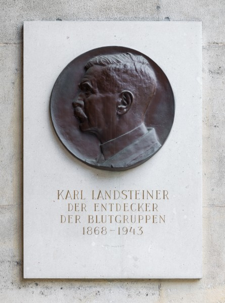 Karl Landsteiner (1868-1943), bas-relief (bronze) in the Arkadenhof of the University of Vienna-