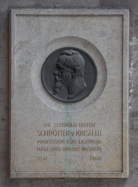 Leopold Schrötter von Kristelli (1837-1908), Nr. 101basrelief (bronze) in the Arkadenhof of the University of Vienna 2519