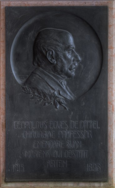 Leopold von Dittel (1815-1898), Nr. 79 basrelief (bronze) in the Arkadenhof of the University of Vienna 1397