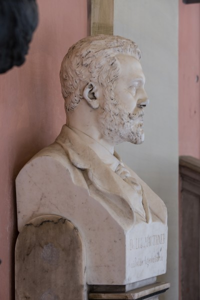 Ludwig Mauthner (1840-1894), physician, Nr. 126, bust (marble) in the Arkadenhof of the University of Vienna-3571