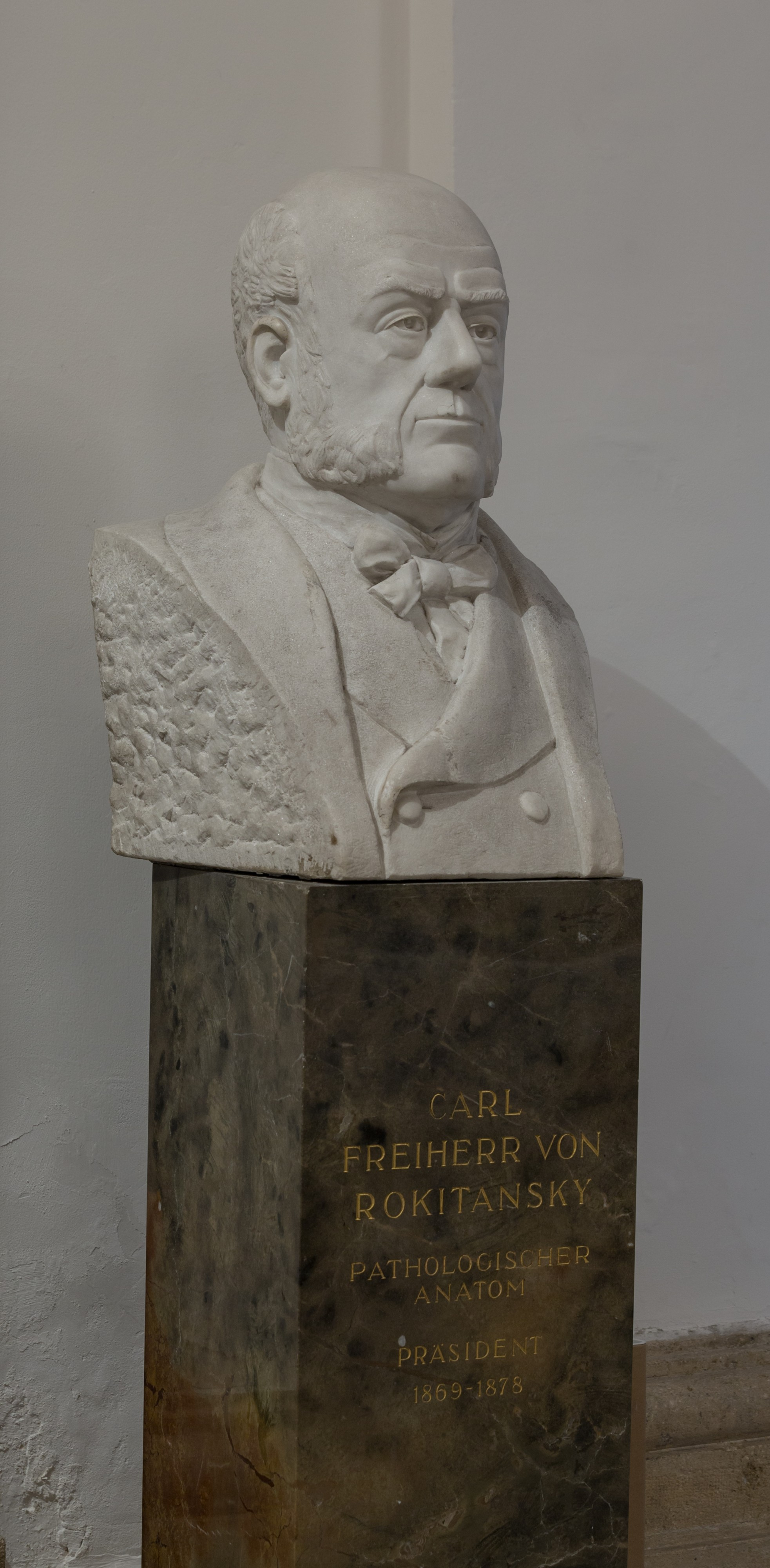 Carl von Rokitansky, Pathologist, bust in the aula of the Academy of Sciencis, Vienna - hu - 8540