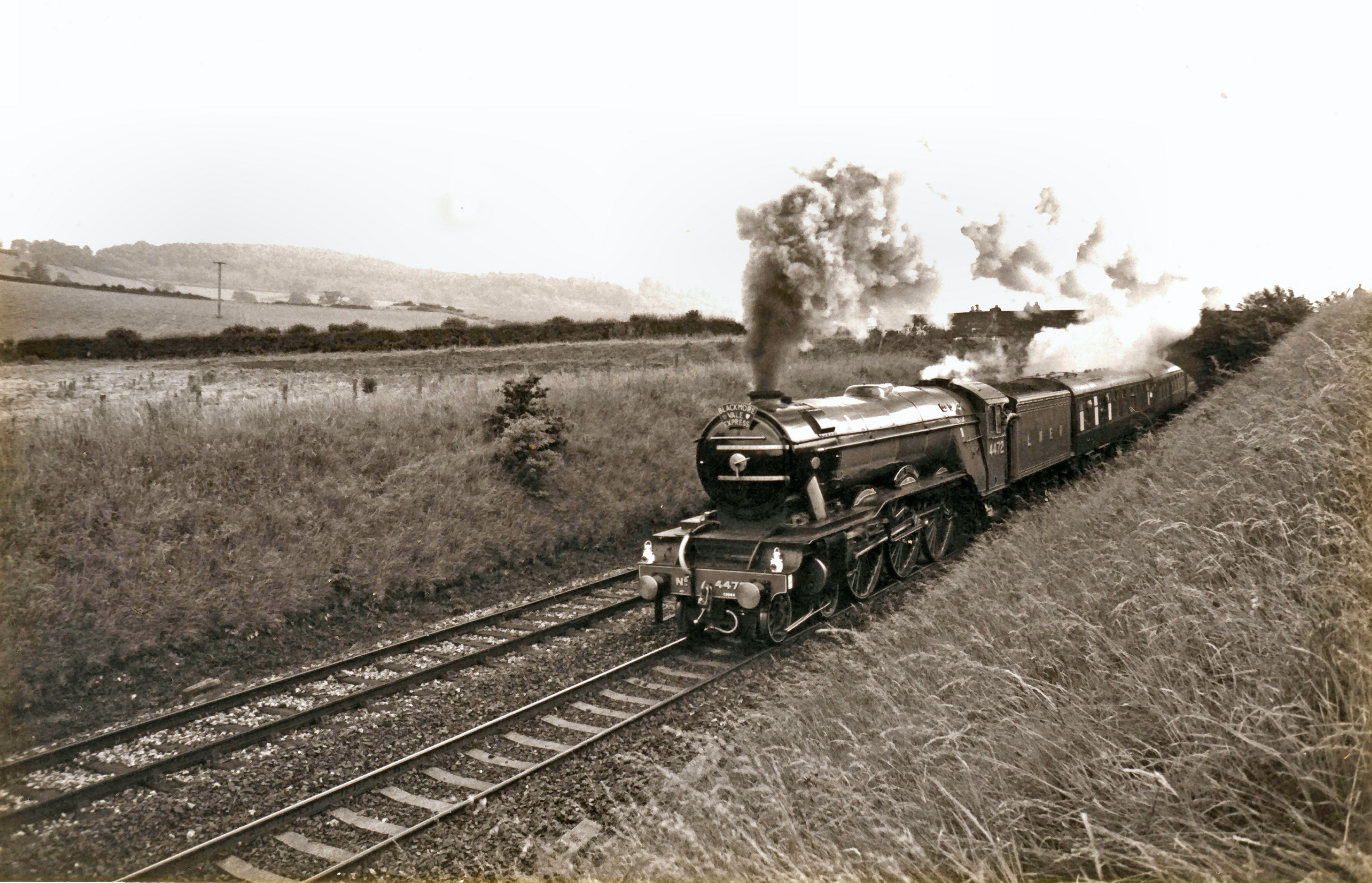Ex LNER steam locomotive Flying Scotsman running with the Blackmore Vale Express makes light work of the Milborne Bank - panoramio (1)