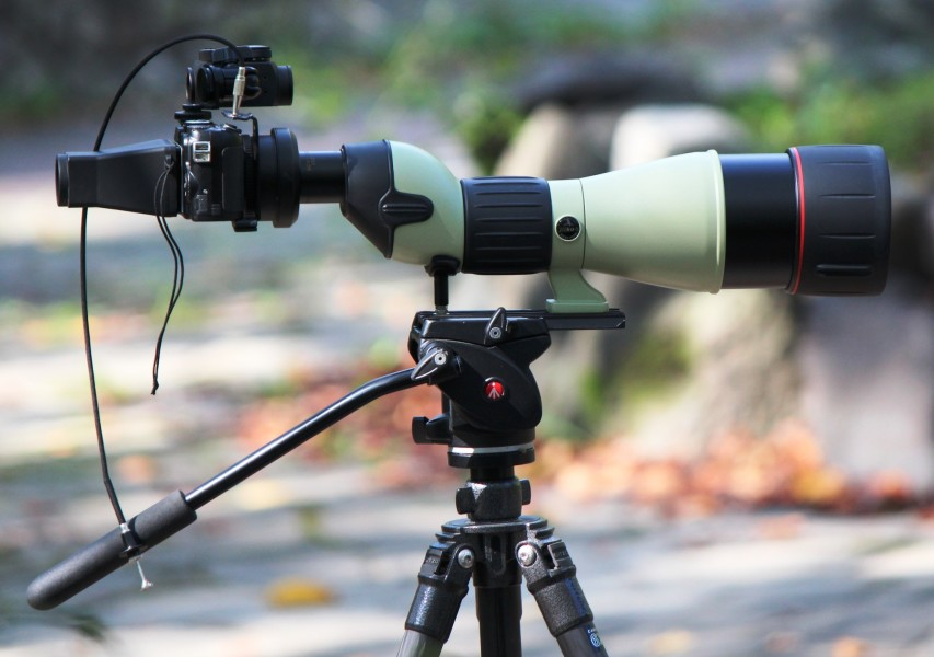 Digiscoping with Nikon ED82