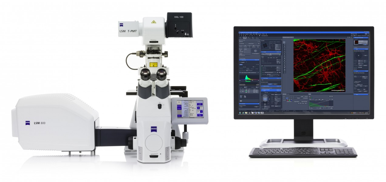 ZEISS LSM 800 with Airyscan- Your Compact Confocal Power Pack (15664982003)
