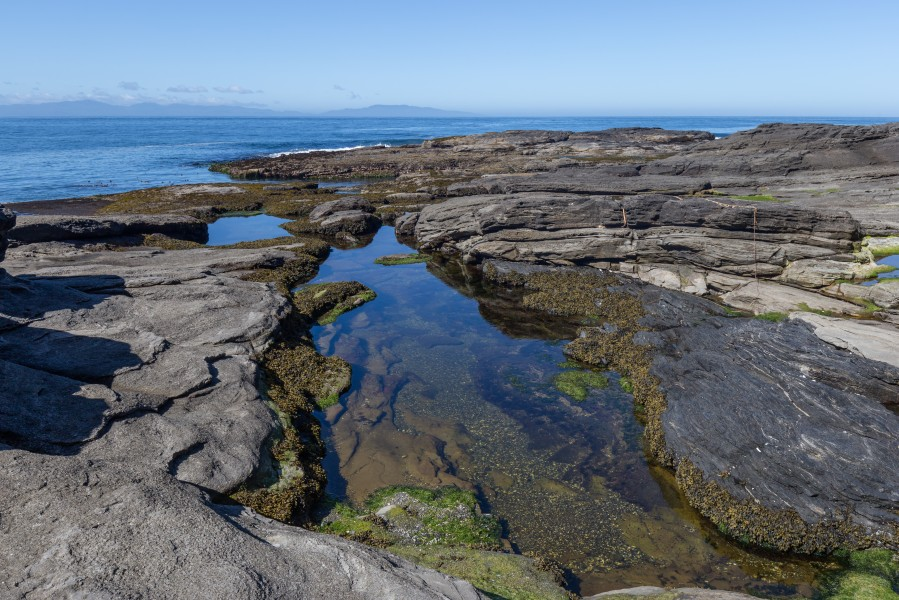 Rocky coast between Little Kuitshe Campsite and Payzant Campsite, Juan de Fuca Trail, Vancouver Island, Canada 40