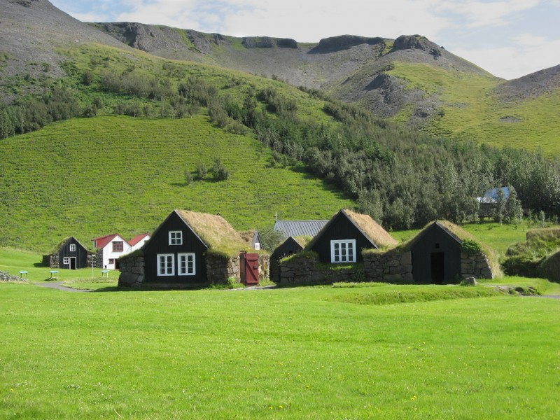 Houses with grass on the roof