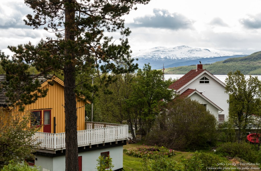 Finnsnes, Norway, photographed in June 2018 by Serhiy Lvivsky, picture 5