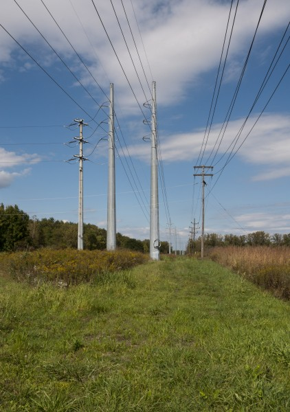 New High Transmission Lines Cut through the Meadow 1
