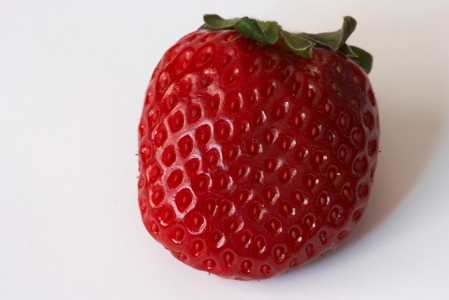 Fragaria - Frutilla - Strawberry (Cadiz, Spain)