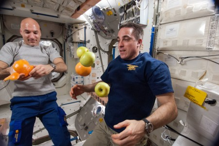 ISS-36 Luca Parmitano and Chris Cassidy with fresh fruit in the Unity node