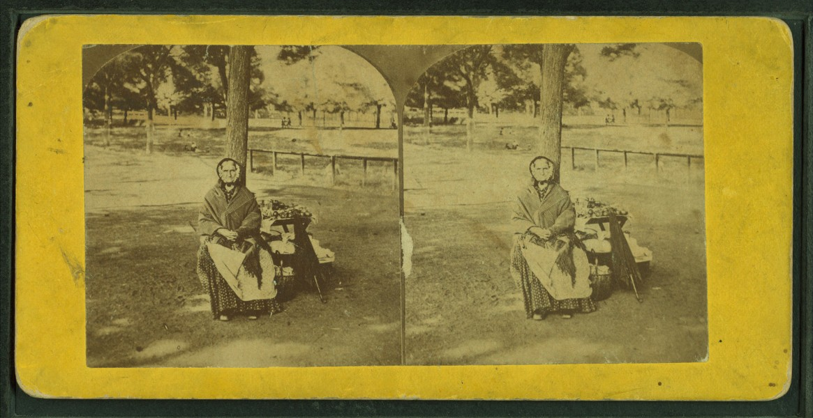 Old apple woman, Boston Common, from Robert N. Dennis collection of stereoscopic views