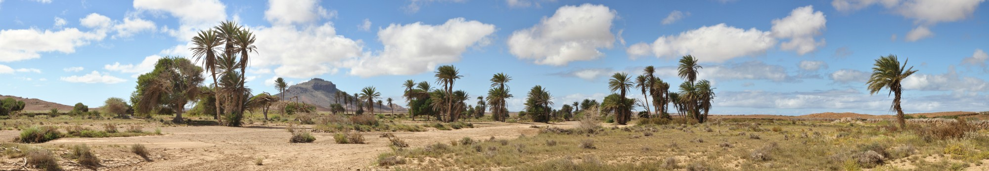 Panoramic view of an oasis like area in central western Boa Vista, 2010 12