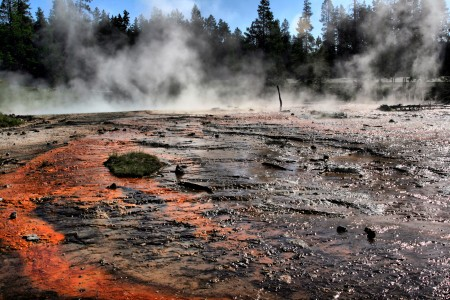 Silex spring overflow in yellowstone