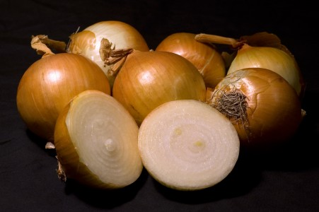 Yellow onion with x-section