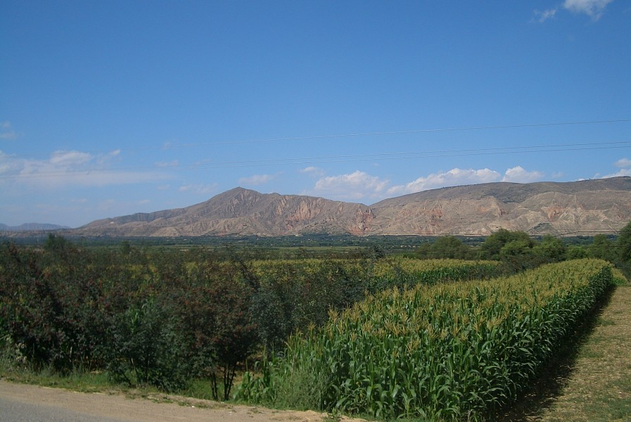 5881-Linxia-County-Daxiahe-valley-fields