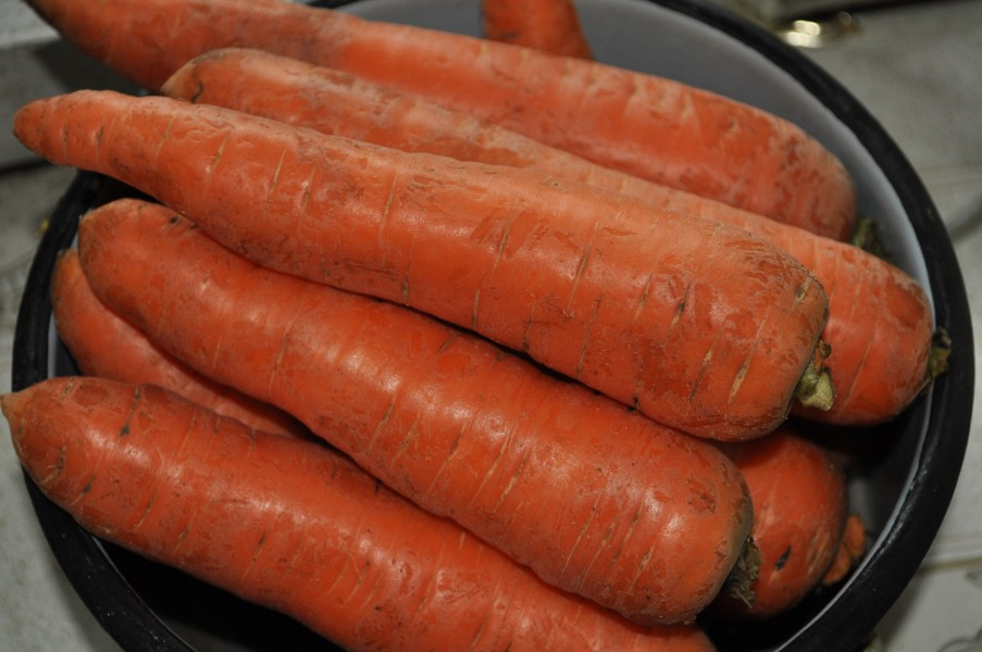 Carrots in Stew Pan