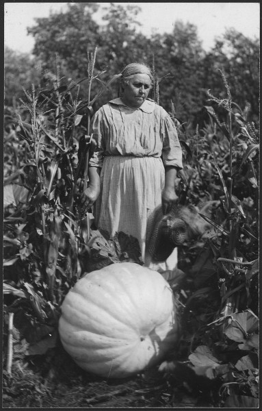 Woman with large pumpkin at Cass Lake - NARA - 285291