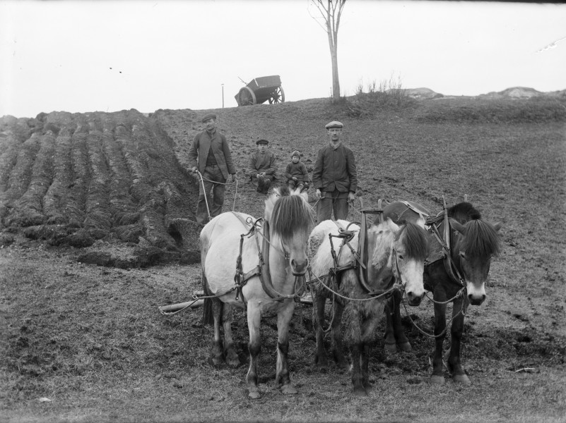Farm work, Yndestad, 1916.
