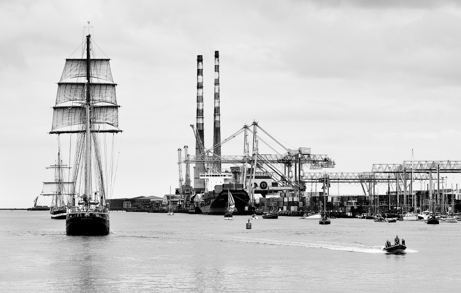 Gulden Leeuw 2014 Pelican of London past Ringsend bw