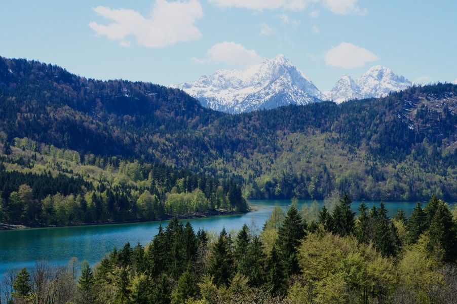 Alpensee view from Schloss Hohenschwangau ( Bavaria) (2)